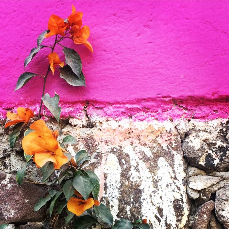 The Colors of San Miguel De Allende 2017